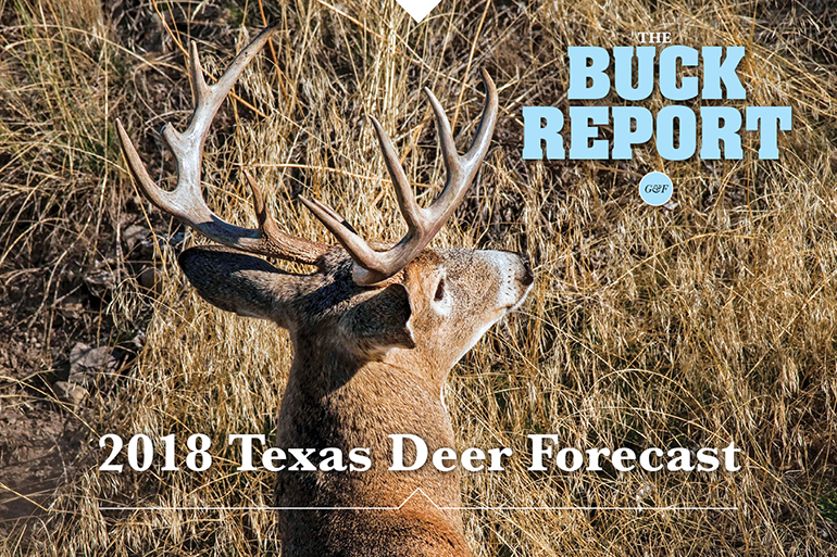 2018 Texas Deer Forecast