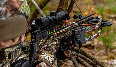 Crossbows are more popular – and legal – in more places, and statistics show they're not that much more effective than vertical bows.