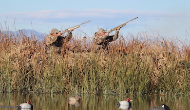 Waterfowling requires extreme attention to detail. Use these tips to fill more limits this season.