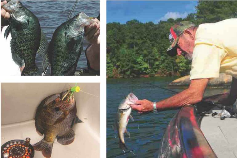 The The eastern Georgia lake may be best known for its bass, but anglers will find more trophies in these waters than just largemouths. Georgia lake may be best known for its bass, but anglers will find more trophies in these waters than just largemouths.