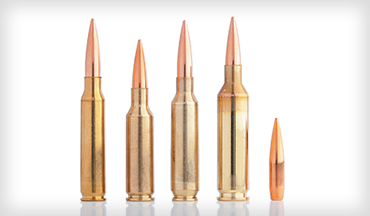Pair your ammunition with a straight-shooting rifle, such as the Savage Model 12 Varmint Series, and bagging a 'yote this winter will almost be in the bag.