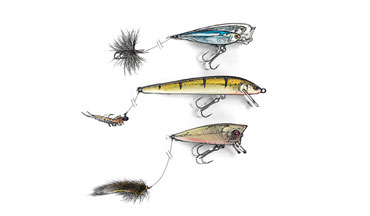 A dropper line offering a secondary lure has proven deadly on shallow panfish and bass.