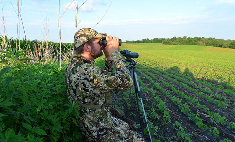 hunter glassing on field edge