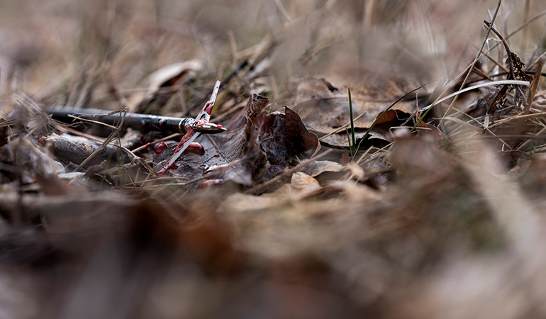Top Field-Tested Broadheads for Fall 2018
