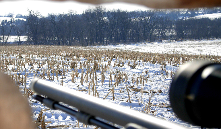 view from late-season hunting blind