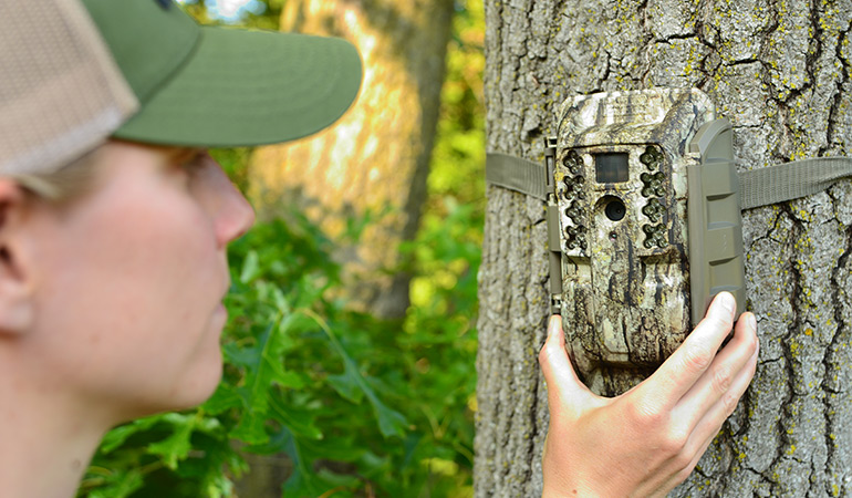 woman setting up trail camera on tree