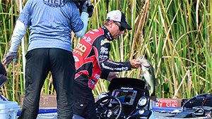 MLF Challenge Cup Filming in Central Florida