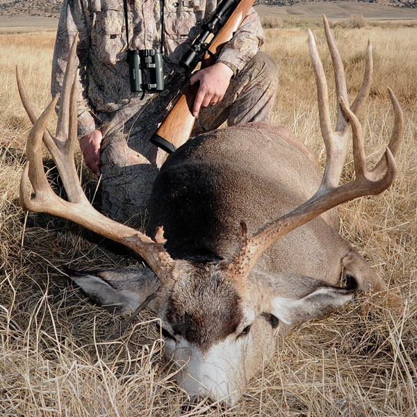 Shooting a big muley takes time. In fact, if you're looking for a true trophy, you'll need to be okay with holding out and being selective.