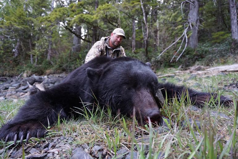 Prince-of-Wales-Island-Alaska-Black-Bear.jpg