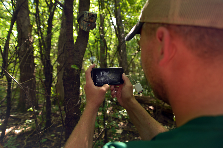 3 Ways You're Using Trail Cameras Wrong