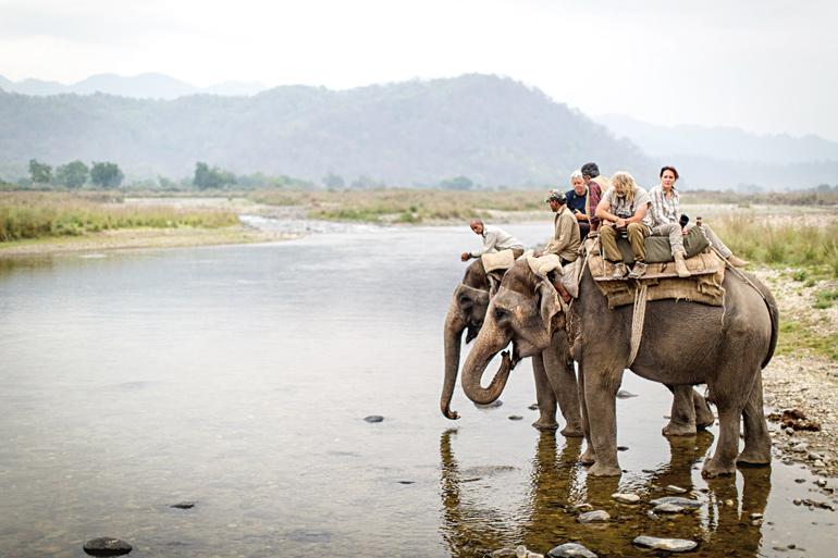 Wheels-Afield-Elephant-Ride.jpg
