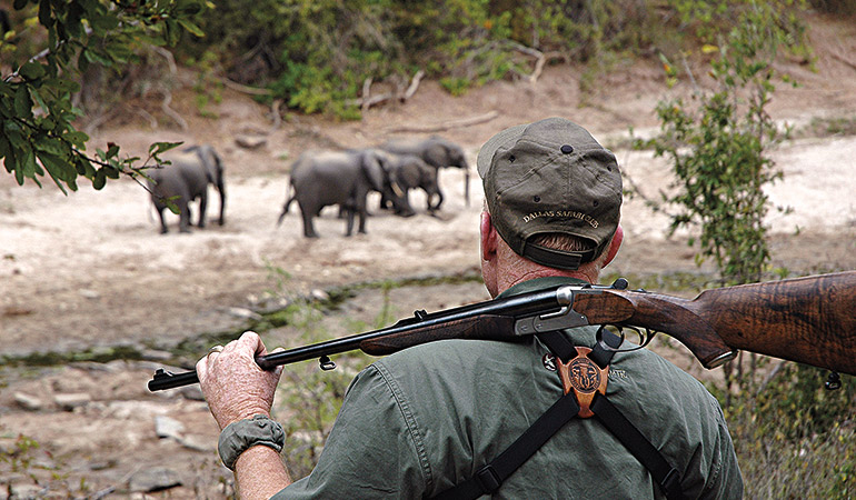Hunt the African Big 5