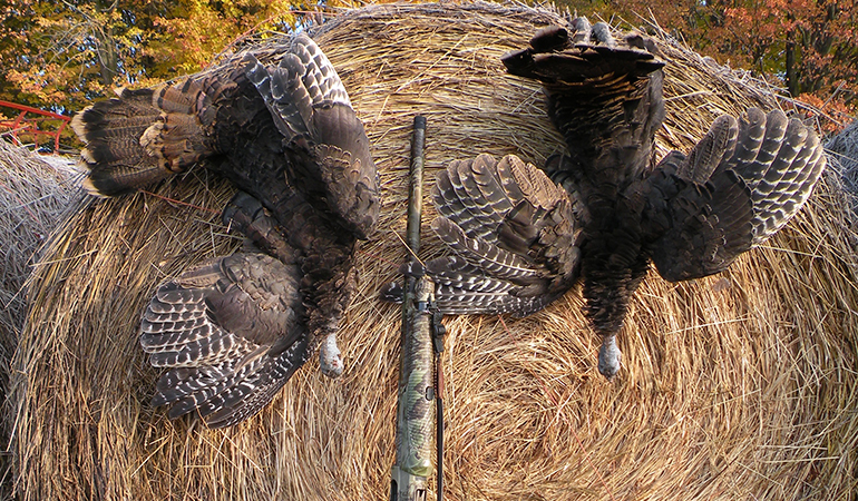 5 Tips to Kill a Fall Turkey