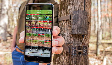 Trail cameras can provide some valuable intel, but don't rely on them too much.