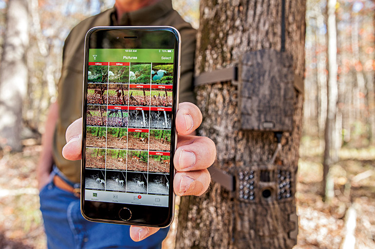Are You Relying Too Much on Trail Cameras?