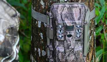The new Moultrie X-6000 series cellular trail camera and the Moultrie Mobile app are redefining remote and low-impact scouting. Here's why and how one or a network of them can help you.