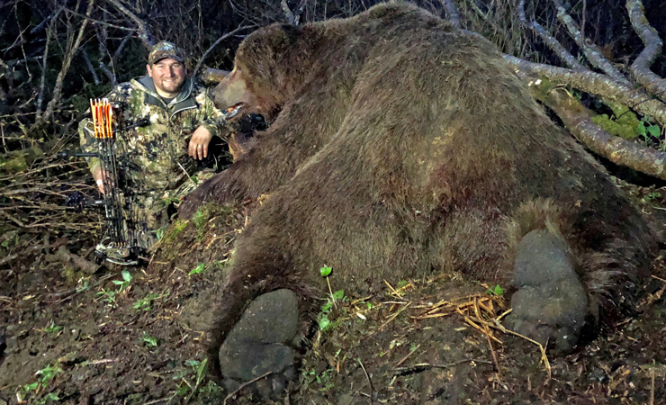 Massive Alaskan Brown Bear is the New World Record