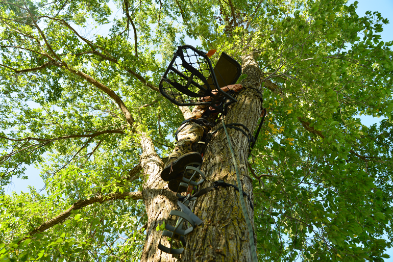 Bowhunter-Hanging-Treestand.jpg