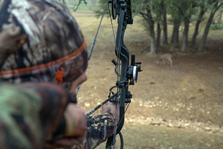 Treestand Shot Selection for Bowhunters