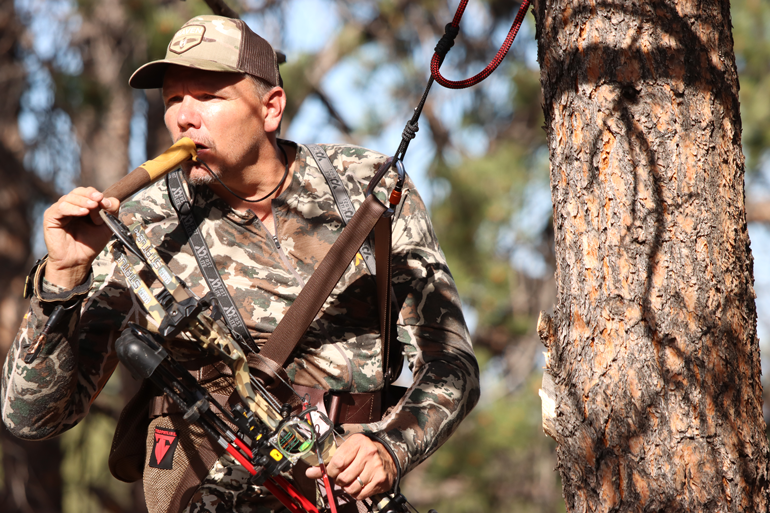 Look to Tree Saddle Hunting for Fall Success