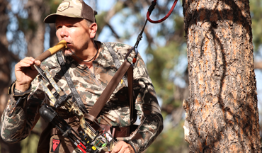 Take your hang-and-hunt to the next level with a Trophyline Tree Saddle.