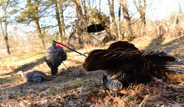 Make no mistake about it, you have the power to spice up a spring turkey bowhunt!