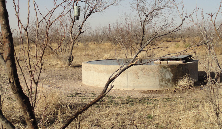 Water-Tank-Open-Country-Whitetails.jpg
