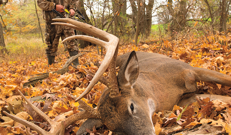 Learn why Dr. Dave Samuels says hunters bear some blame for the CWD issue and what we can do to preserve whitetails.