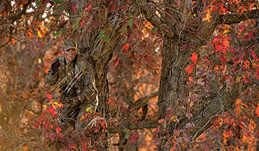 Rut-crazed bucks can wait. Here's how to take full advantage of the early archery season.