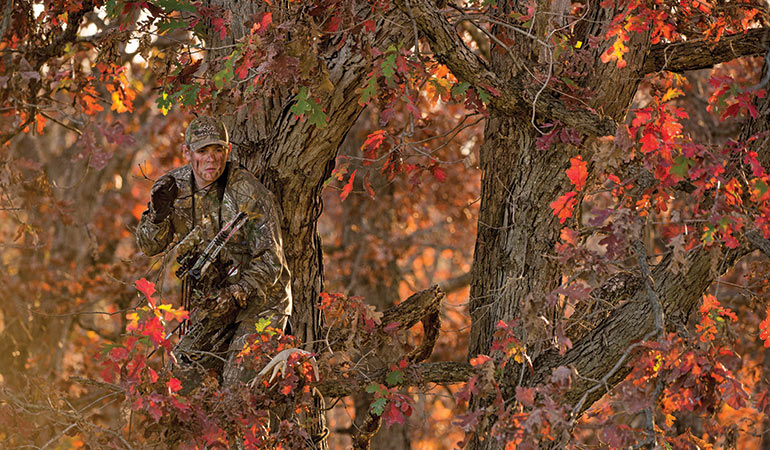 Celebrating October: How to Hunt Before the Rut