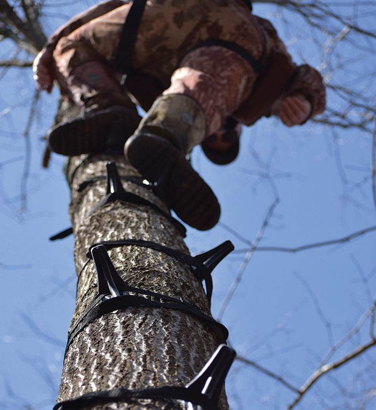 How Do You Get Up the Tree for Saddle Hunting?