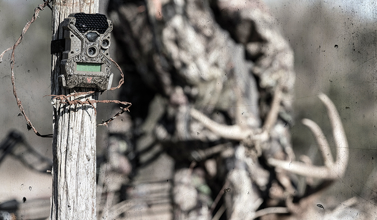 How To Use Trail Cameras Throughout Hunting Season
