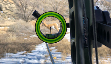 Learn why many common concerns about single-pin sights are non-issues and how they can actually help your accuracy!