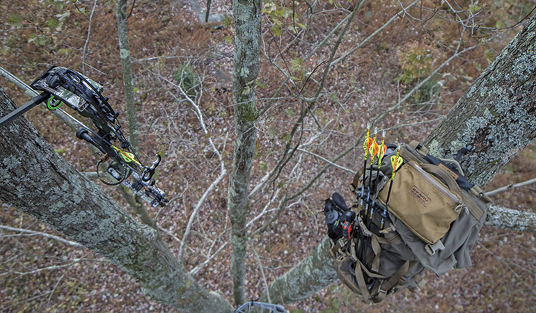 bowhunting setup in triple trees
