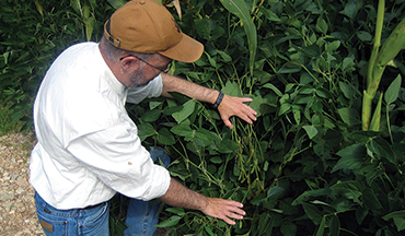 With the proper steps, even rocky soil can generate nutritious food plots on your whitetail property.