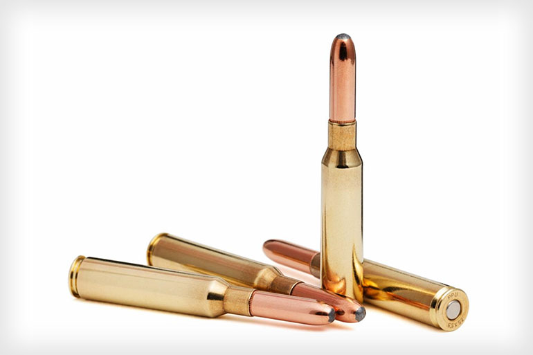 Steinel Ammunition Revives the 6.5 x 52mm Carcano