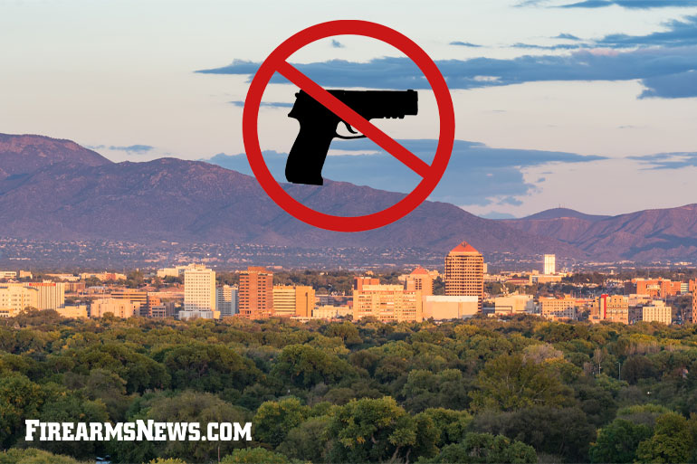 Albuquerque Mayor Skirts State Law, Bans Guns in City Parks