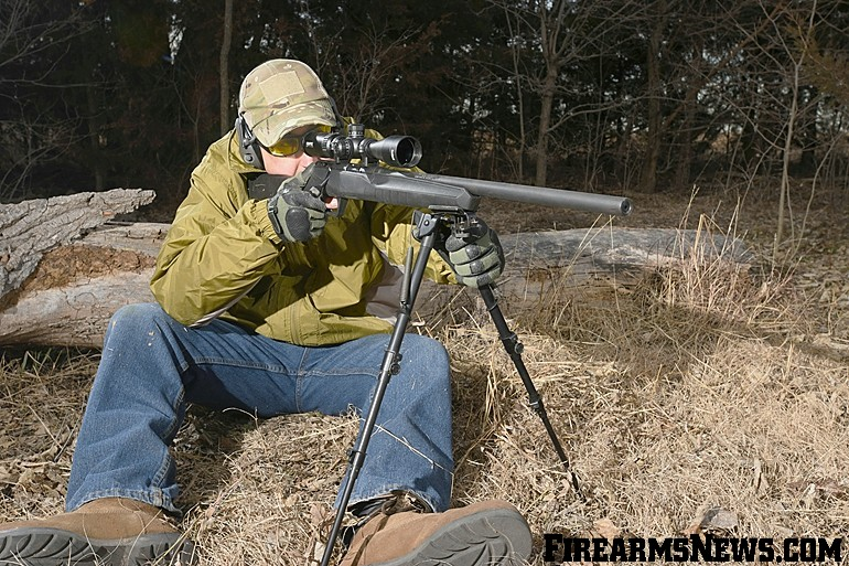 Savage Arms .17 HMR B17 FV Review