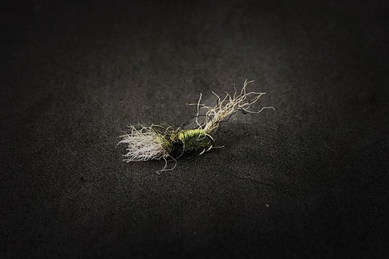 //content.osgnetworks.tv/flyfisherman/content/photos/BWO-Cripple-Flat.jpg