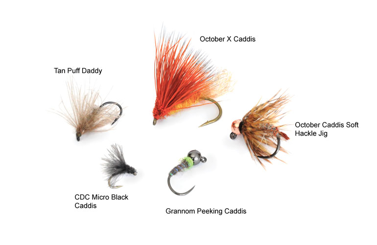 //content.osgnetworks.tv/flyfisherman/content/photos/Best-Flies-for-Imitating-Caddis.jpg