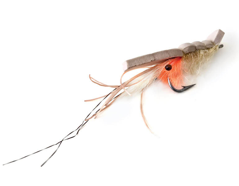 //content.osgnetworks.tv/flyfisherman/content/photos/Bonefish-surface-fly.jpg