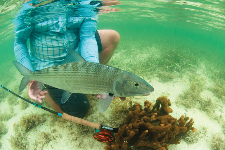 //content.osgnetworks.tv/flyfisherman/content/photos/Catching-Bonefish-in-the-Florida-Keys.jpg