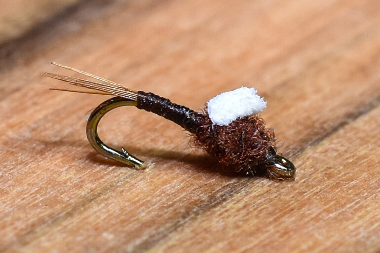 //content.osgnetworks.tv/flyfisherman/content/photos/Chocolate-Foam-Wing-Emerger.jpg