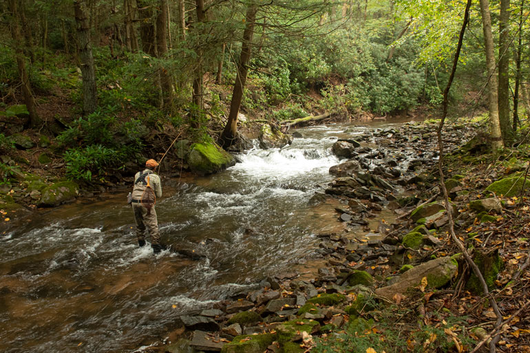 //content.osgnetworks.tv/flyfisherman/content/photos/Class-A-Streams-for-Trout-in-Pennsylvania.jpg