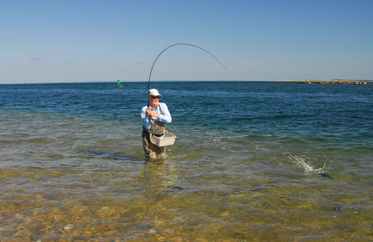 //content.osgnetworks.tv/flyfisherman/content/photos/DSC_0391.jpg