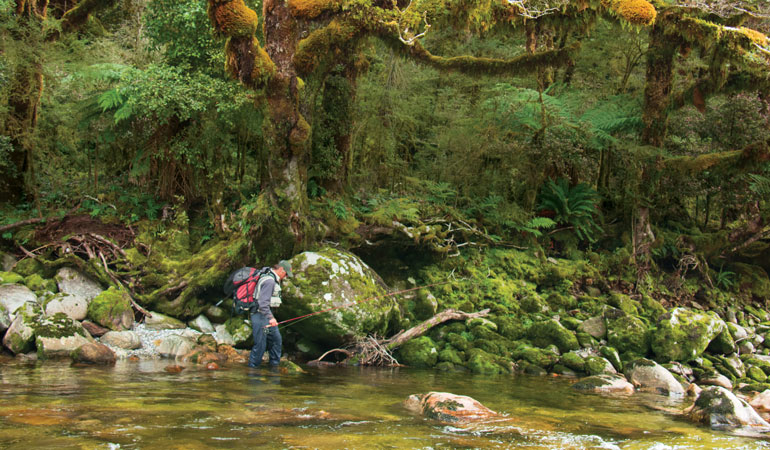 South Island: The Mount Everest of Trout Fishing