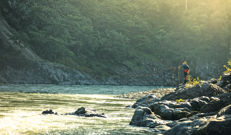 The Quest for the Golden Mahseer