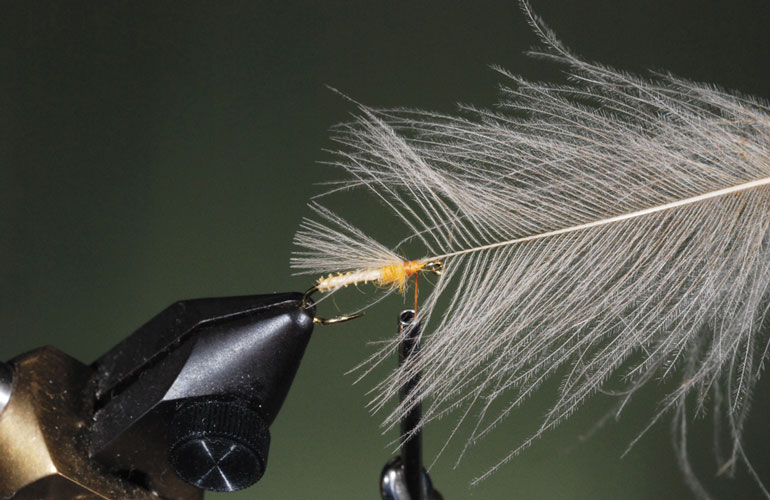 //content.osgnetworks.tv/flyfisherman/content/photos/How-to-Tie-the-Puff-Diddy-Fly-Step-3.jpg