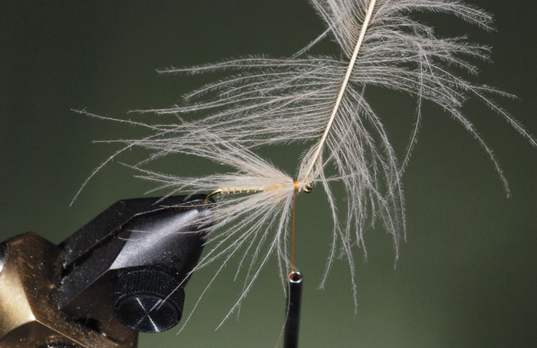 //content.osgnetworks.tv/flyfisherman/content/photos/How-to-Tie-the-Puff-Diddy-Fly-Step-4.jpg