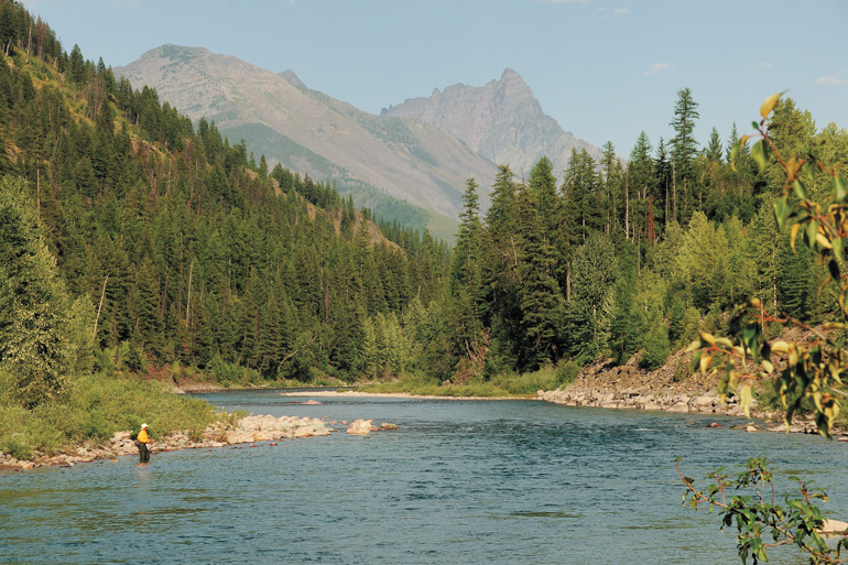 The North and Middle forks of the Flathead are terrific resources overshadowed by the grandiosity of Glacier National Park.